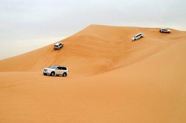 Dubai. Desert driving