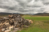 Pile firewood prepared for winter