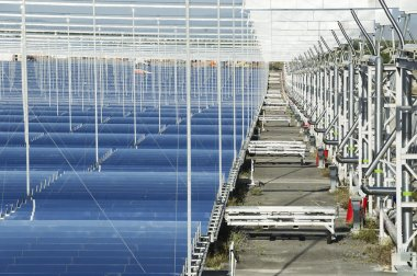 Renewable Energy: Solar: The newest and the cleanest way to prod