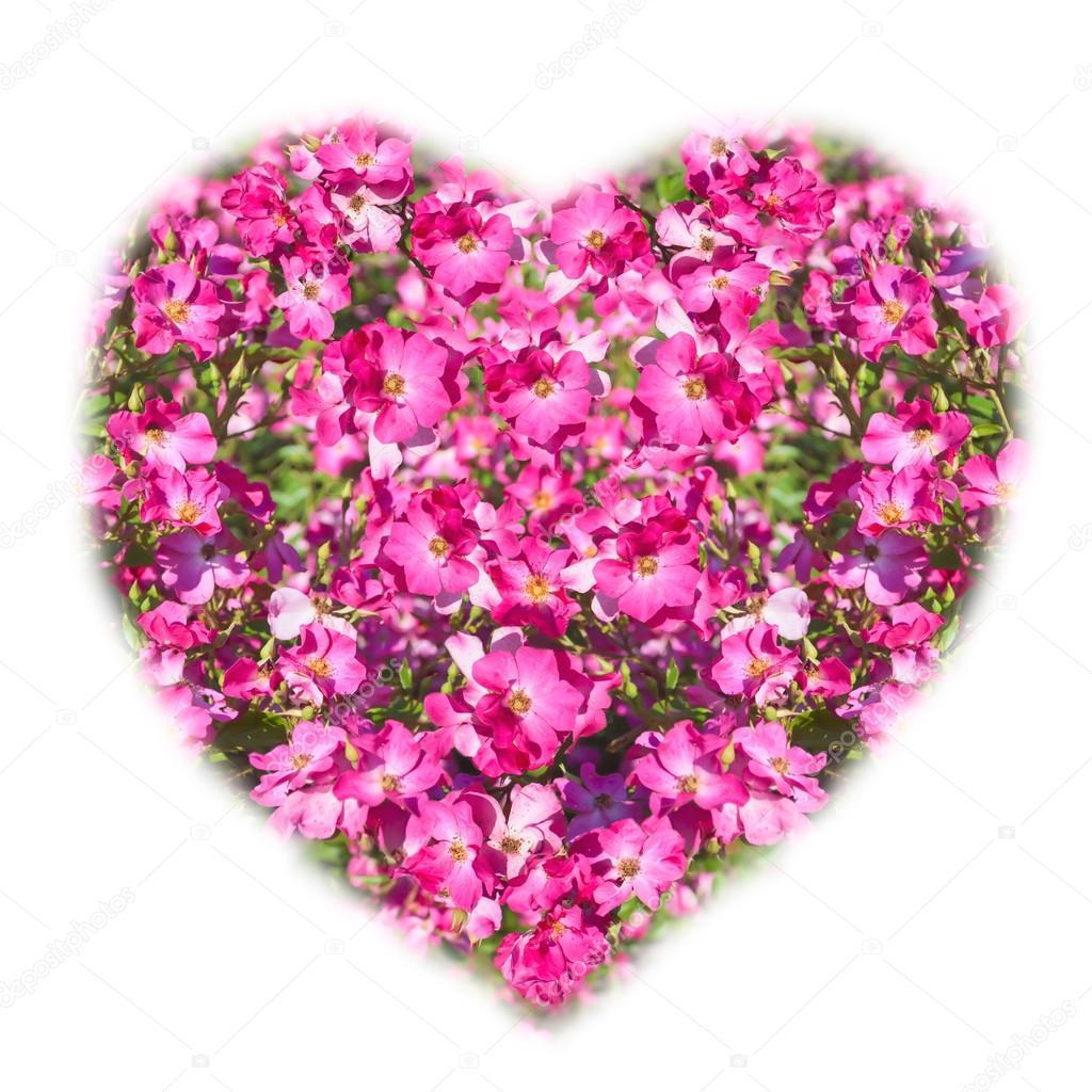 Imágenes Flores En Forma De Corazon Ramo De Flores En Forma De