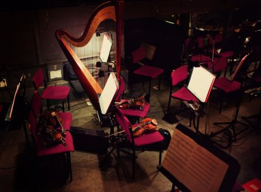 Harp and violins in orchestral pit