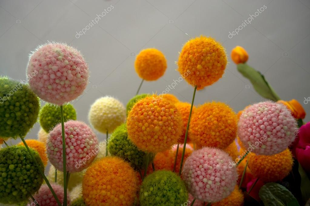 Vari tipi di fiori foto stock jcomp 37771749 for Tipi di fiori