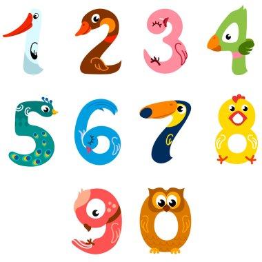 Numbers like birds