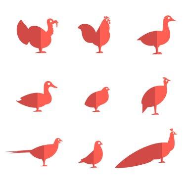 Farm bird flat icons