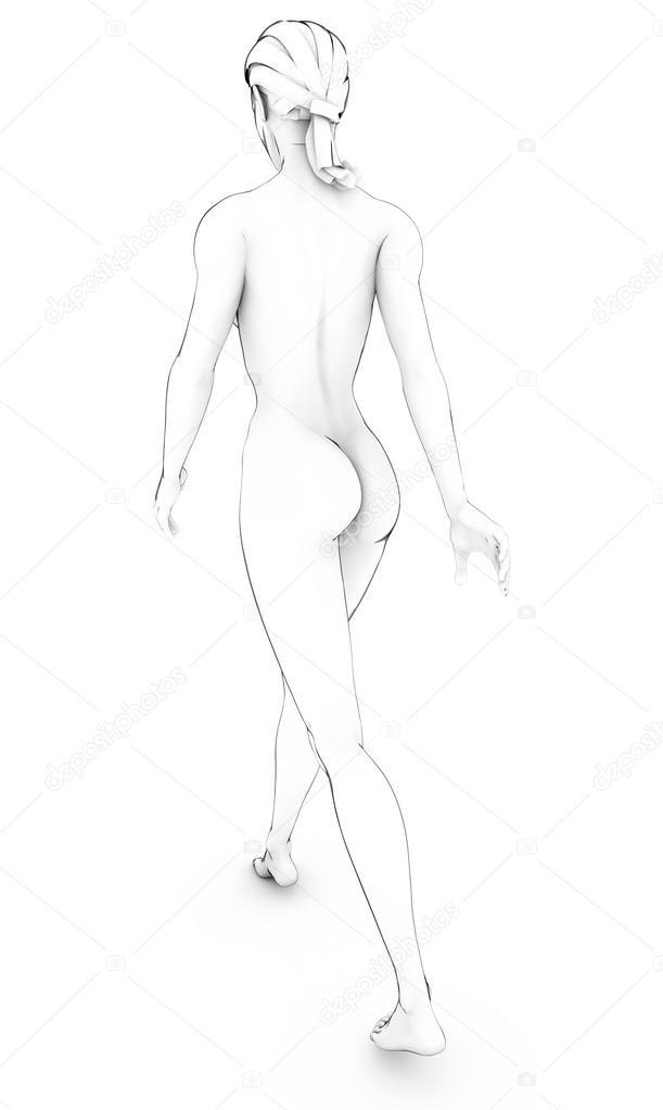 Dibujo dibujo de mujer cuerpo humano Anatomía cuerpo blanco — Foto ...