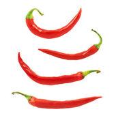 červené chilli, samostatný