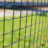 Fotografia campo verde dietro il recinto