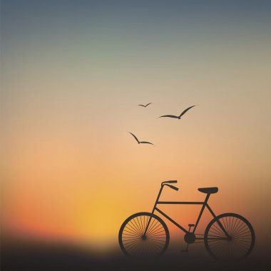 Bicycle at sunset background