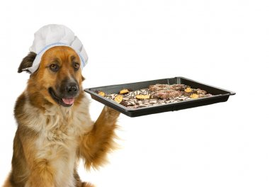 Dog with a chefs hat is offering christmas cakes
