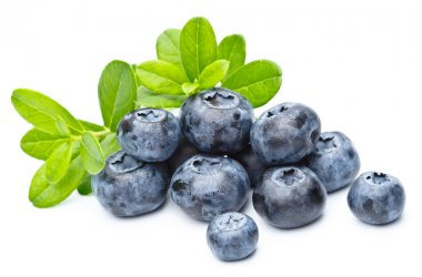 Ripe bilberries