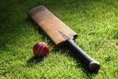 Cricketschläger und Ball