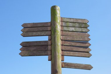 Blank wooden signpost