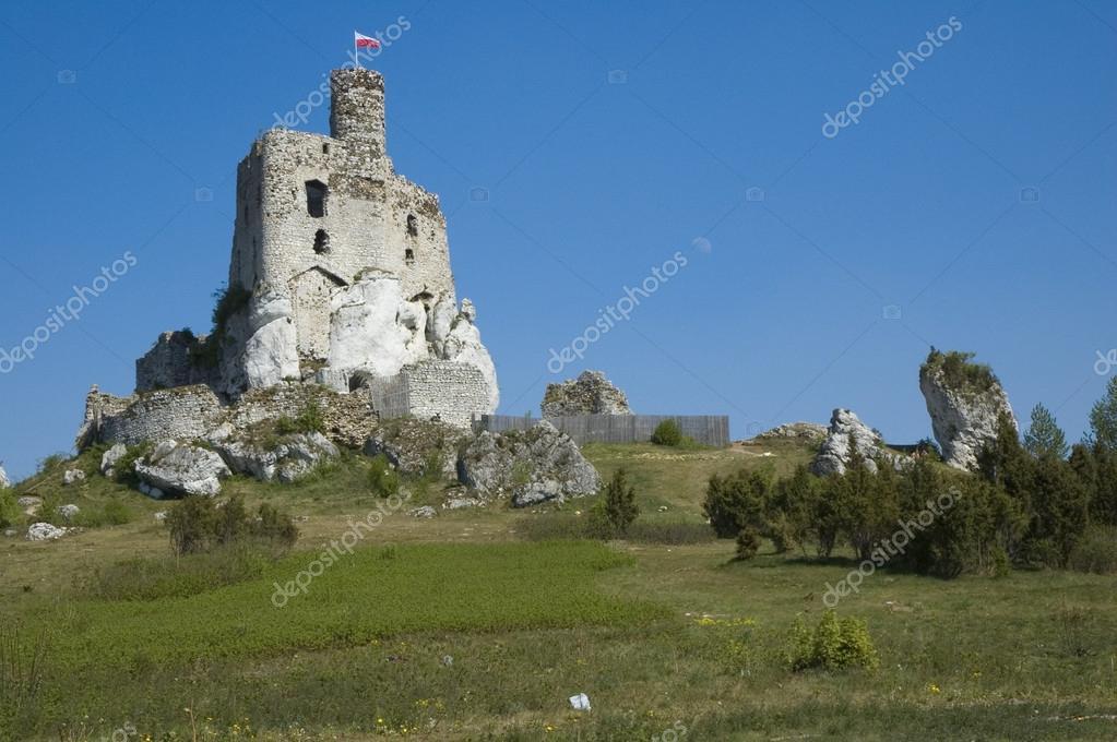 Rovine Del Castello A Mirow Polonia Foto Di Mskorpion