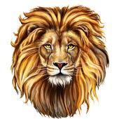 Re Leone aslan