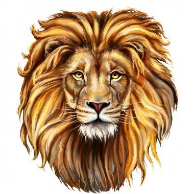 King lion Aslan
