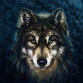 Fotografia testa di lupo