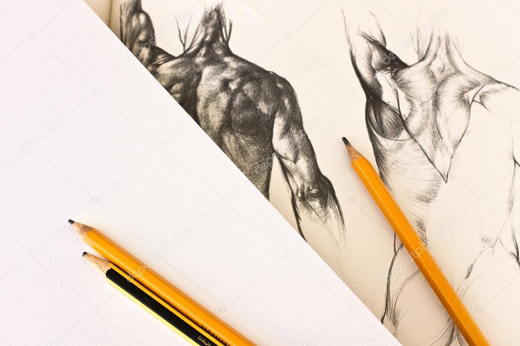 menschlichen Körper Anatomie Bildende Kunst Zeichnung — Stockfoto ...