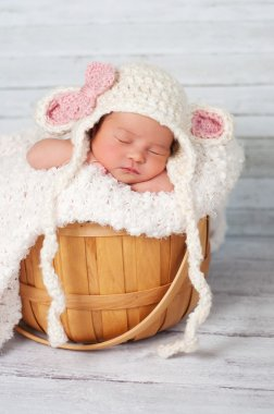 Newborn girl wearing a crocheted lamb hat and sitting in a basket