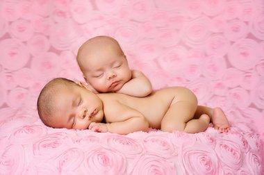 Newborn baby girls sleeping on pink, three dimensional rose fabric.