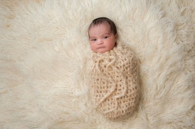 Newborn Baby Bundled Up in a Pouch