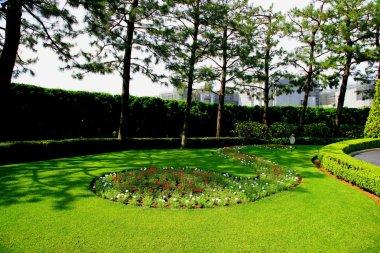 Tokyo Disneyland gardening lawn