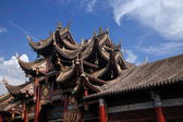 Fotografia sale museo Zigong