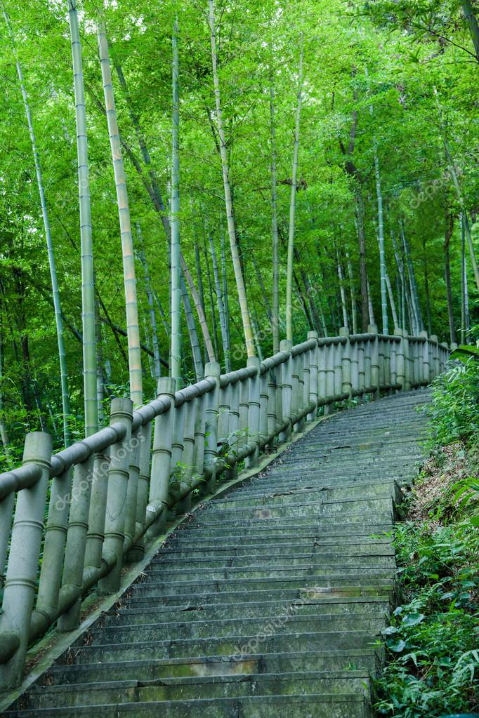 Yongchuan District, Chongqing Dasan Bamboo Bamboo Scenic