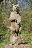 Erdős Grizzly medve