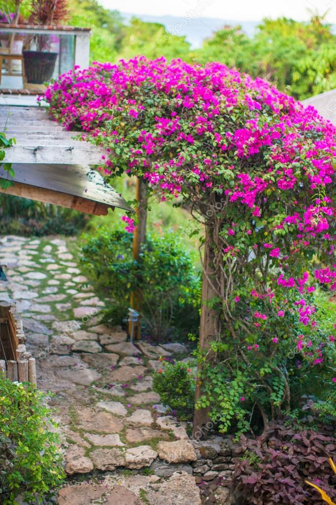Bella vista del giardino fiorito in un piccolo e - Giardino piccolo foto ...