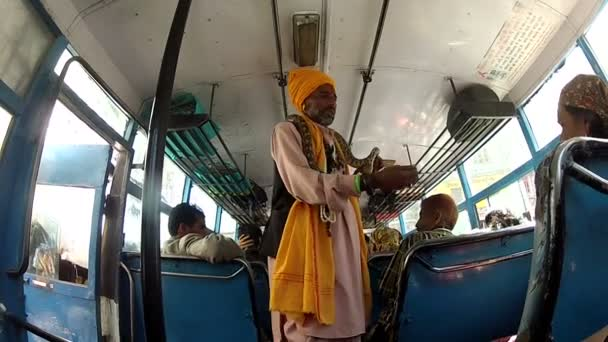 Indie baba v autobuse s hadem