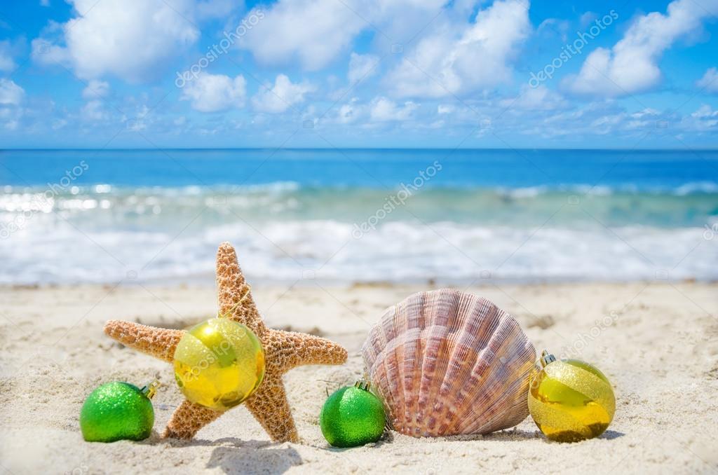 depositphotos_29578253-stock-photo-starfish-and-seashell-with-christmas