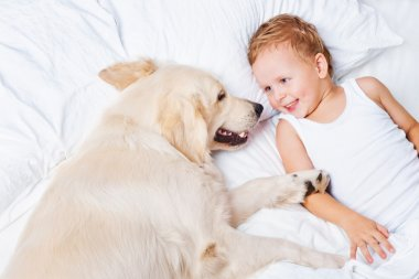 Little boy and a dog in bed