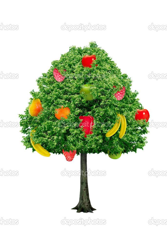 Im genes arbol frutos rbol con frutos aislado sobre un for Arbol de frutos rojos pequenos