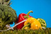 Zdraví a fitness věci s světlé pozadí