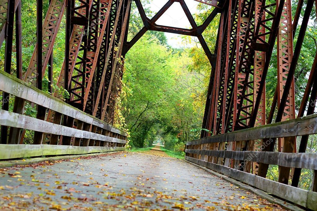 Covered Iron Bridge in Woods
