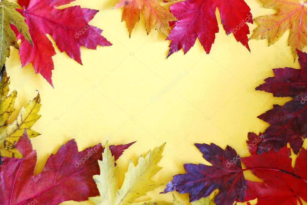 Colorful Autumn Leaves Frame on Yellow Background