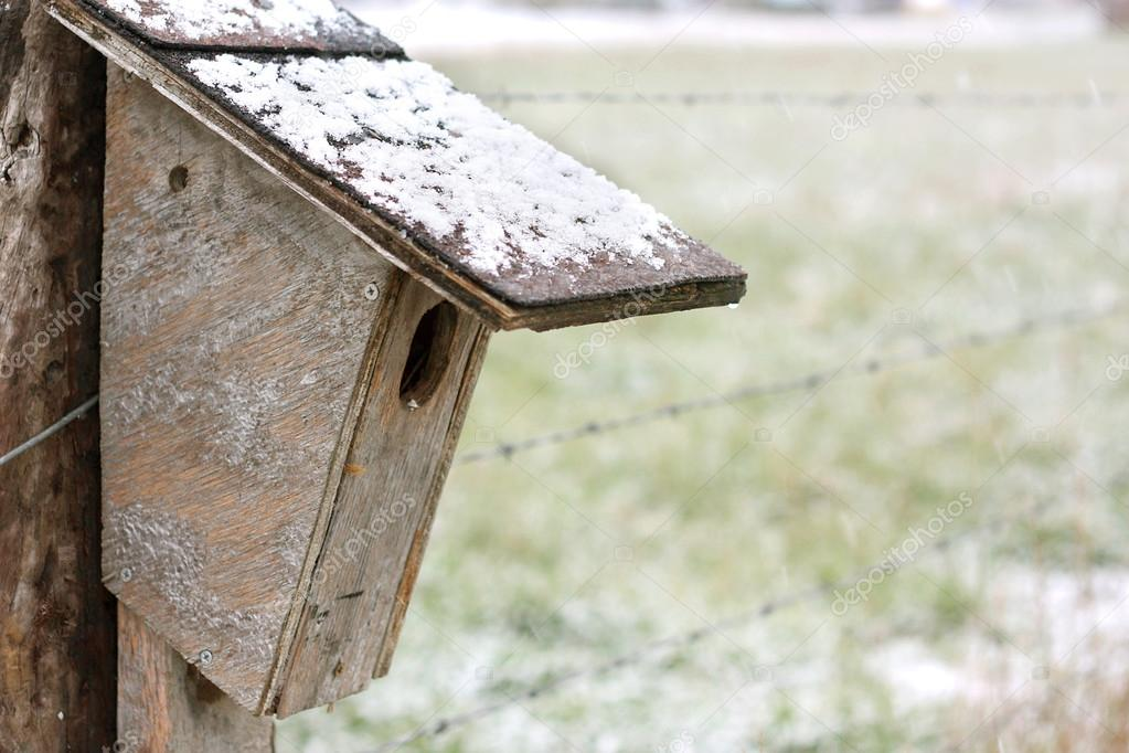 Homemade Birdhouse Hanging on Fence in Winter
