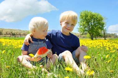 Two Happy Young Children Eating Watermellon in Flower Meadow