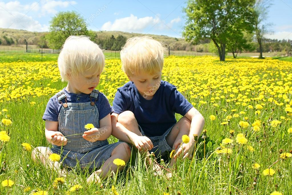 Young Children Picking Flowers in Dandelion Meadow