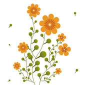 Fotografie Orange flowers on curling stems.