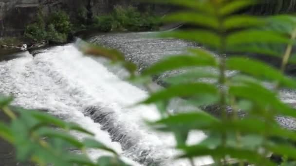 kleiner Fluss Wasserfall in der Natur