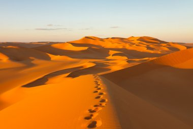 Footprints in the Sand Dunes - Murzuq Desert, Sahara, Libya