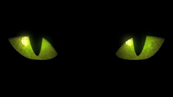 Macska szeme villogó hurok