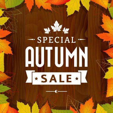 autumn special sale vintage vector typography poster on wood background