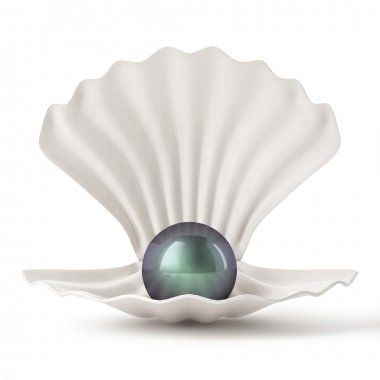 3d Black Shell with pearl isolated on white background