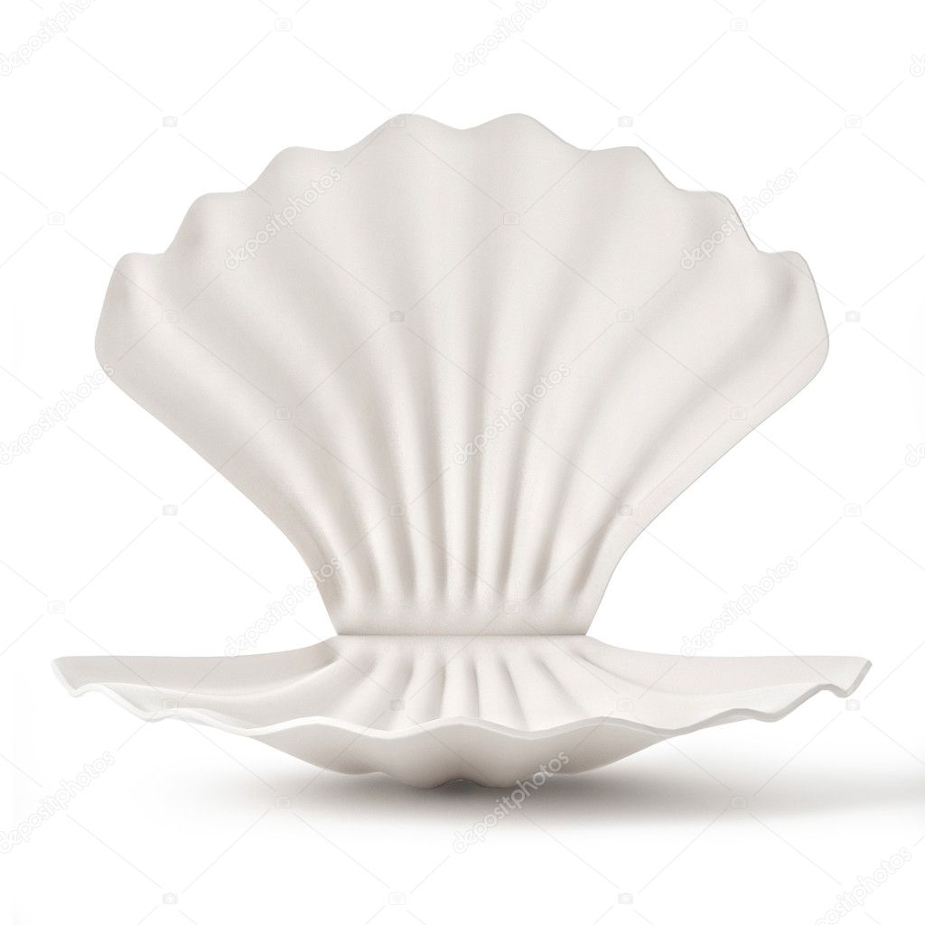 3d White empty Shell isolated on white background