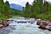 Photo Raging mountain river