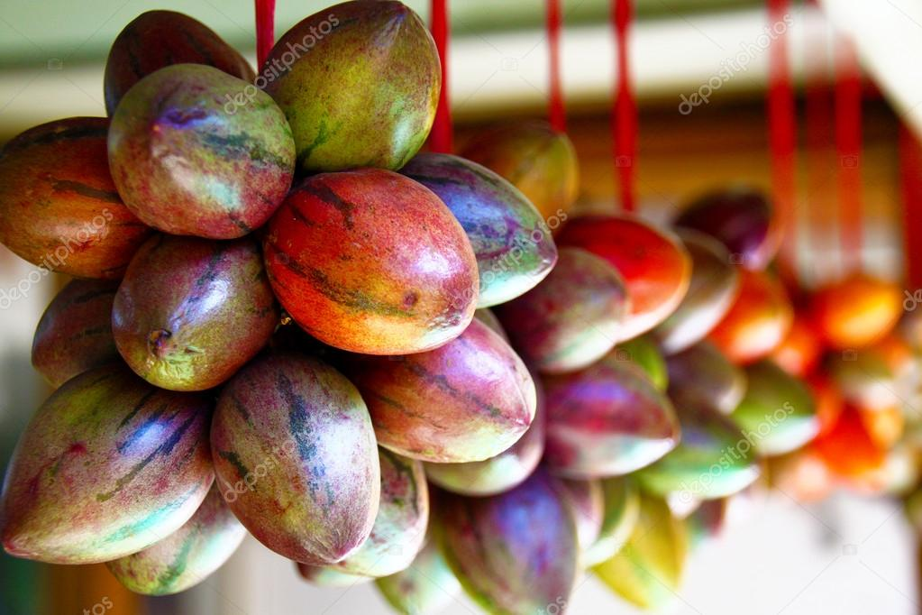 Terong belanda fruit op java indonesi stockfoto for Nep fruit waar te koop