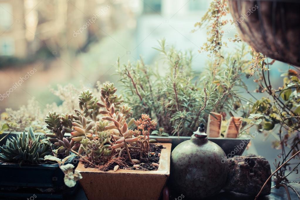 piccolo giardino sul balcone ? foto stock © lofilolo #41370543 - Piccolo Giardino Sul Balcone