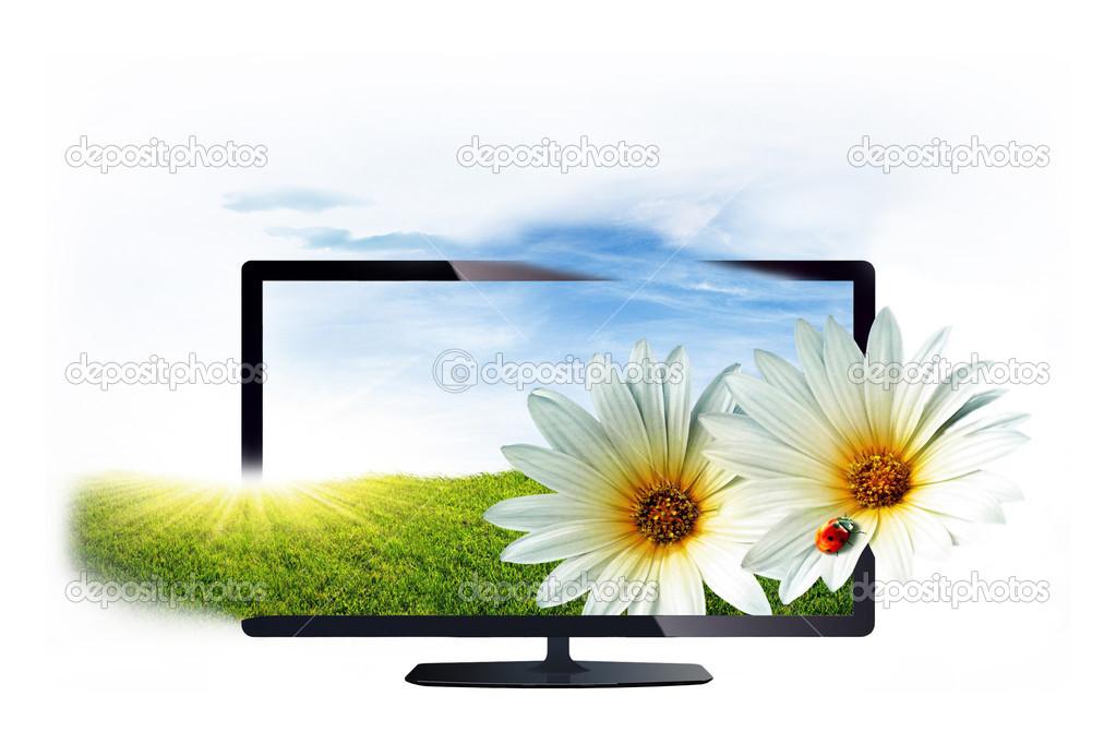 Fernseher isolierten auf weißen Hintergrund — Stockfoto © Fotozum ...